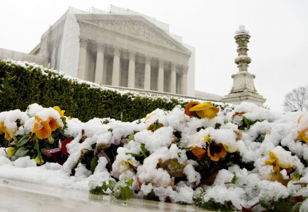 Snow covers flowers in front of the Supreme Court building in Washington, March 25, 2013. In their first-ever review of same-sex marriage laws, the nine justices on the country's highest court are hearing arguments on Tuesday and Wednesday on one of the most politically charged dilemmas of the day, bound with themes of religion, sexuality and social custom. REUTERS/Jonathan Ernst (UNITED STATES – Tags: POLITICS SOCIETY ENVIRONMENT)