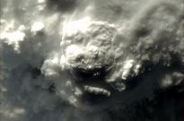 Thunderstorm from above. What animal to you see?