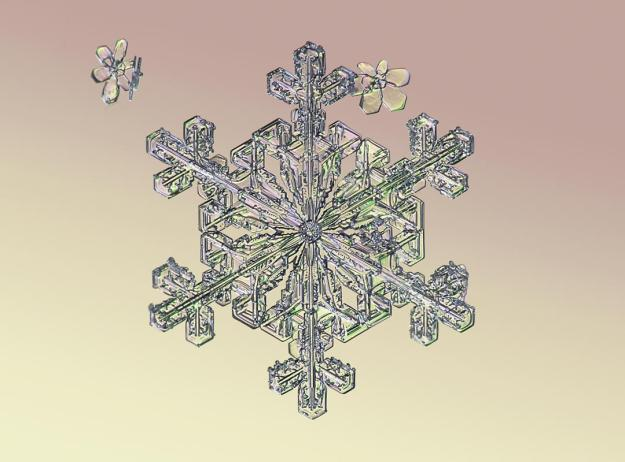 Macro view of snowflake. (Valeriya Zvereva/CATERS NEWS)