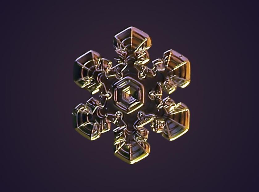 Macro view of snowflake with dark purple behind. (Valeriya Zvereva/CATERS NEWS)