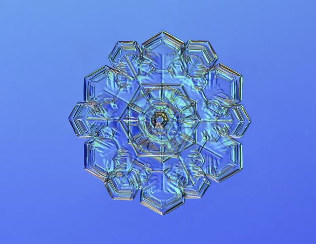 Macro view of snowflake with blue behind. (Valeriya Zvereva/CATERS NEWS)