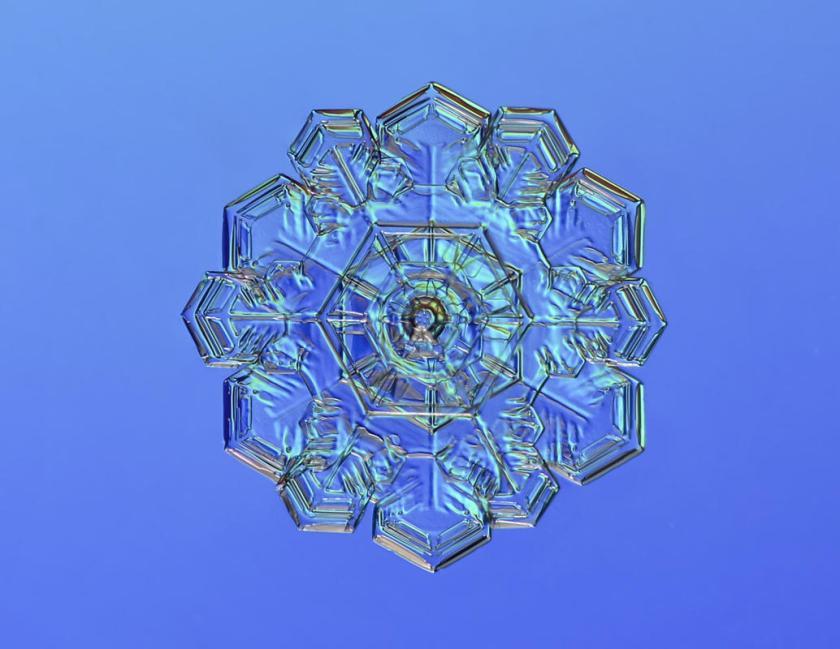 Macro view of snowflake with blue behind. (Valeriya Zvereva/CATERS NEWS)