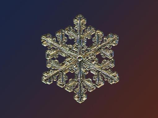 Macro view of snowflake looks like a gold pendant. (Valeriya Zvereva/CATERS NEWS)