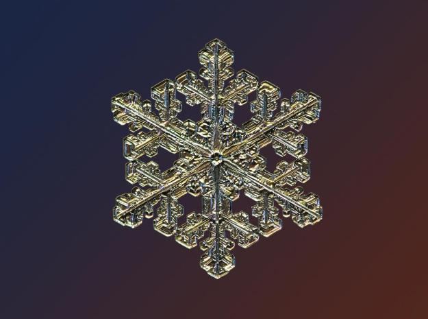 Macro view of snowflake looks like a gold pendant. (Valeriya Zvereva/CATERS NEWS)