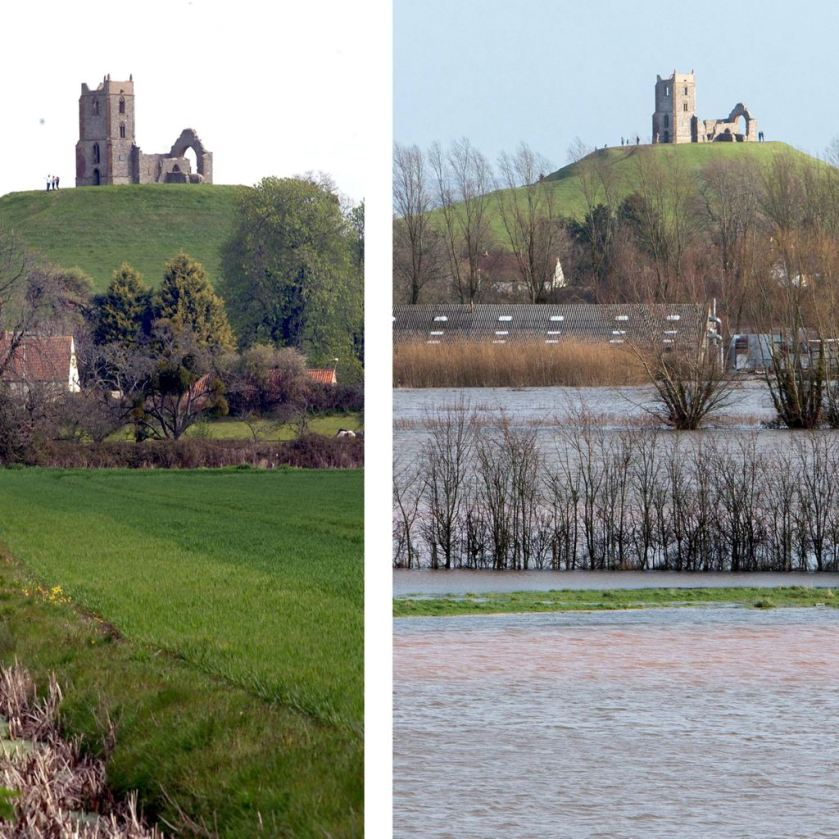 This composite picture of Burrow Mump shows the greenery of the hill before (left) and after (right) the flood waters in Somerset (SWNS)