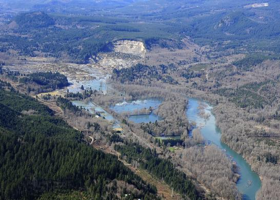 The hillside which collapsed and produced a March 22, 2014 mudslide near Oso, Washington, is seen in this March 23, 2014 handout photo from Governor Jay Inslee's office.  REUTERS/Gov. Jay Inslee's Office/Handout