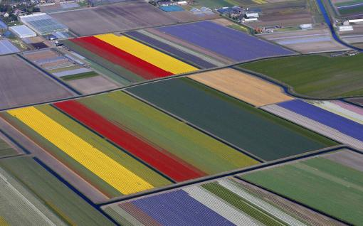 Aerial view of flower fields near the Keukenhof park, also known as the Garden of Europe, in Lisse April 9, 2014. (REUTERS/Yves Herman)