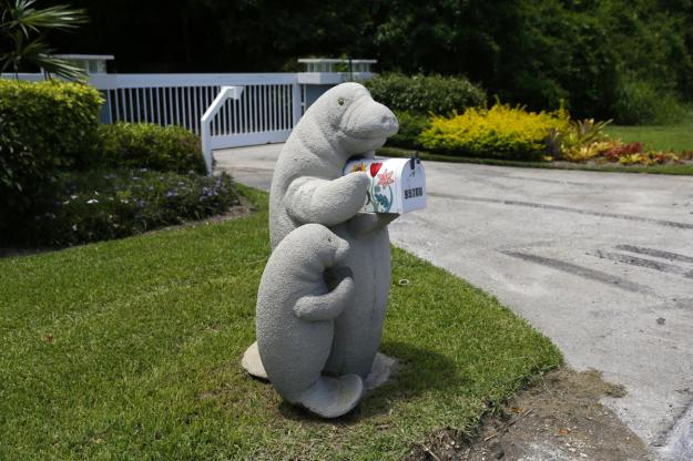 Models of an adult and baby manatee hold a mailbox along the highway US-1 in the Lower Keys near Key Largo in Florida, July 10, 2014. (REUTERS/Wolfgang Rattay)