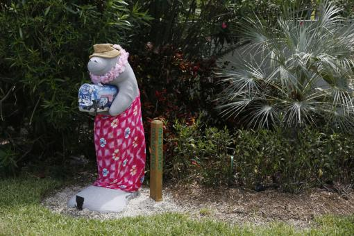 A mailbox in the shape of a manatee stands along the highway US-1 in the Lower Keys near Key Largo in Florida July 10, 2014. (REUTERS/Wolfgang Rattay)