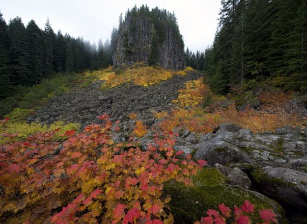 Picturesque: Table Rocks Wilderness, Oregon shows its wonderful autumn display. (Caters)