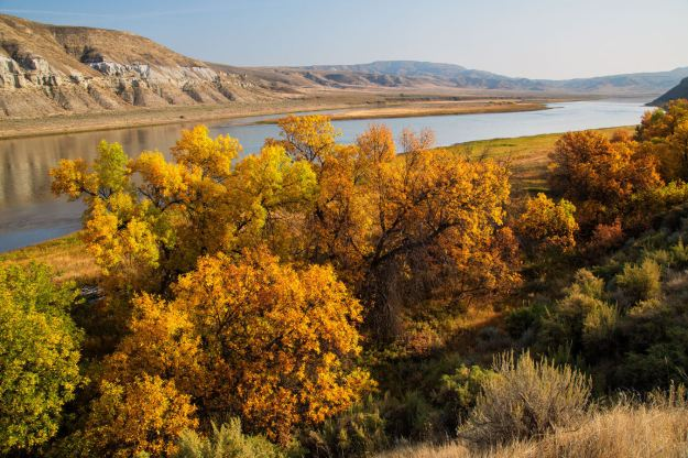 Beautiful: The Upper Missouri River, flanked with autumnal foliage. (Caters)