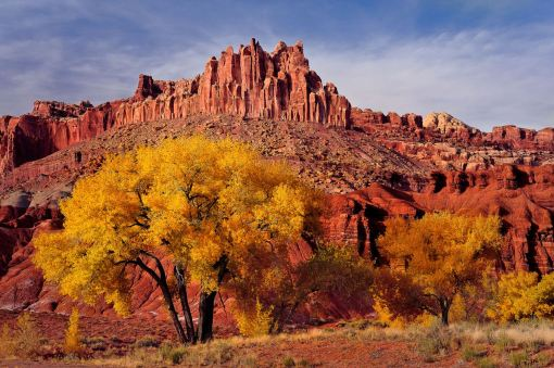 Hitting the heights: The Capitol Reef National Park in Utah. (Caters)
