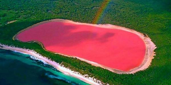 Lake Hillier - Western Australia Unlike many other pink waters around the world, Lake Hillier contains bright pink water that actually remains pink when transferred to a container. Most similar lakes get their colour from a mixture of beta-carotene released by algae and light penetrating the water, but there's currently no scientific explanation as to why Lake Hillier is pink.