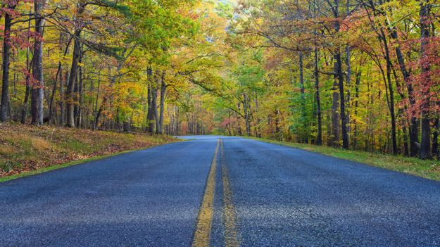 On the road: Blue Ridge Parkway in Virginia. (Caters)