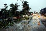 KELIHATAN beberapa pokok tumbang selepas dilanda ribut di Pandamaran. - Foto BERNAMA