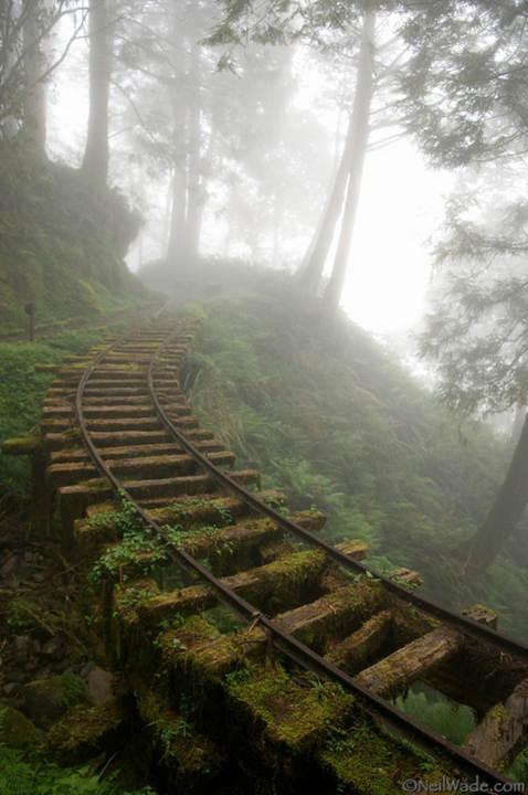 Abandoned mining track, Taiwan. [imgur]