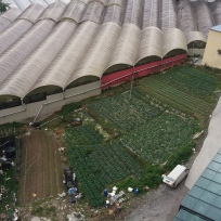A picture of a farm taken from the hotel room.