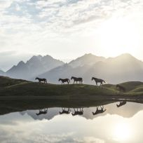 """Morning at Koruldi Lakes in Georgia (country)."" (Witold Ziomek / National Geographic Nature Photographer of the Year contest)"