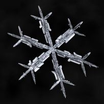 All these snowflakes are photographed on the same homemade black mitten as a background. (Photo: Don Komarechka/Caters News)
